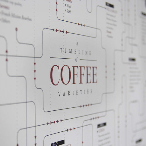 Coffee variety family tree timeline