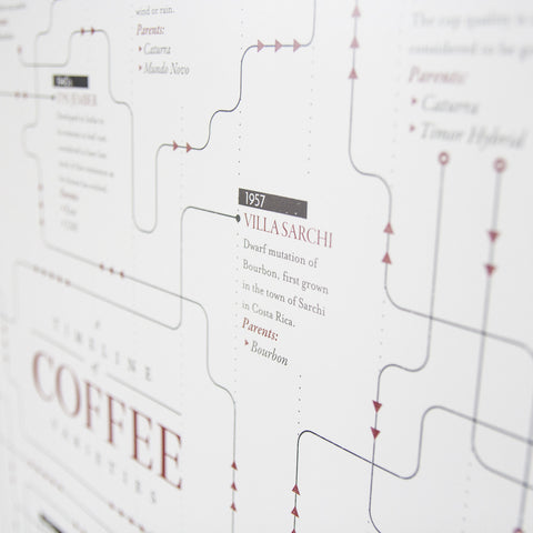 Coffee variety family tree timeline - 3