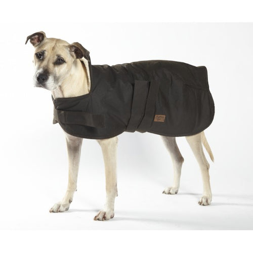 Oilskin Dog Coat with Wool Sherpa Lining