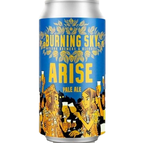 Burning Sky Arise Pale Ale 400ml (4.4%) - indiebeer