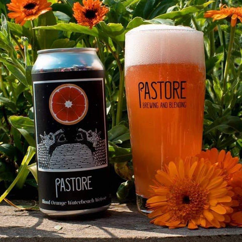 Pastore Blood Orange Waterbeach Weisse Berliner Weisse Sour 440ml (3.8%)