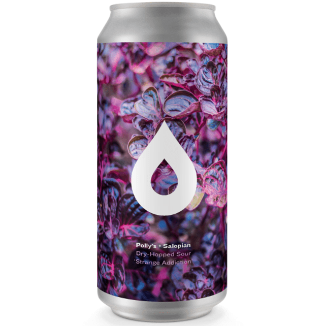 Pollys Brew Co x Salopian collab Strange Addiction - Dry Hopped Sour 440ml (5%)