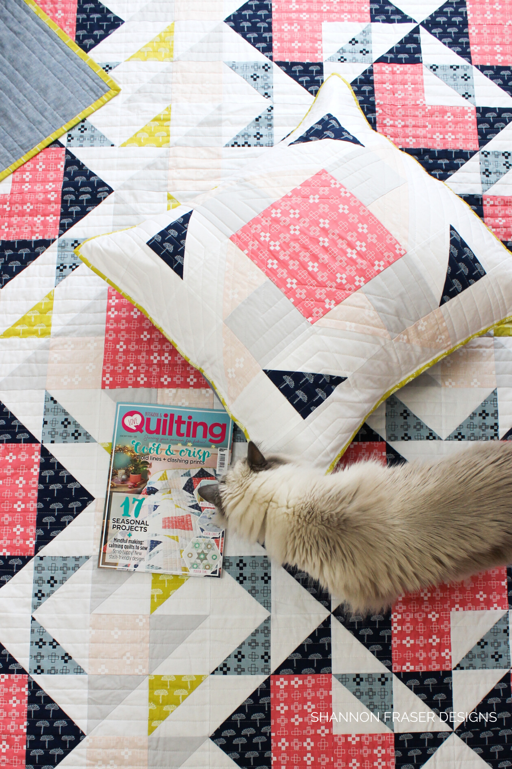 Double Windmill Quilt + Pillow on the ground with Pips on top checking out the quilted pillow and copy of Love Patchwork and Quilting magazine the quilt and pillow are featured in | Shannon Fraser Designs
