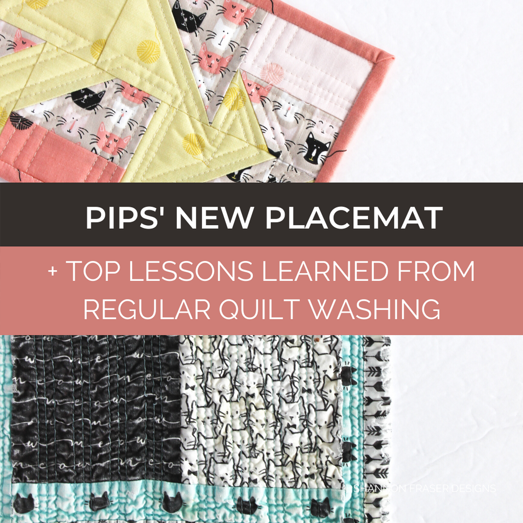 Pips' new food placemat and the top lessons I learned from washing his original mat weekly - sharing my findings up on the blog | Shannon Fraser Designs #petplacemat