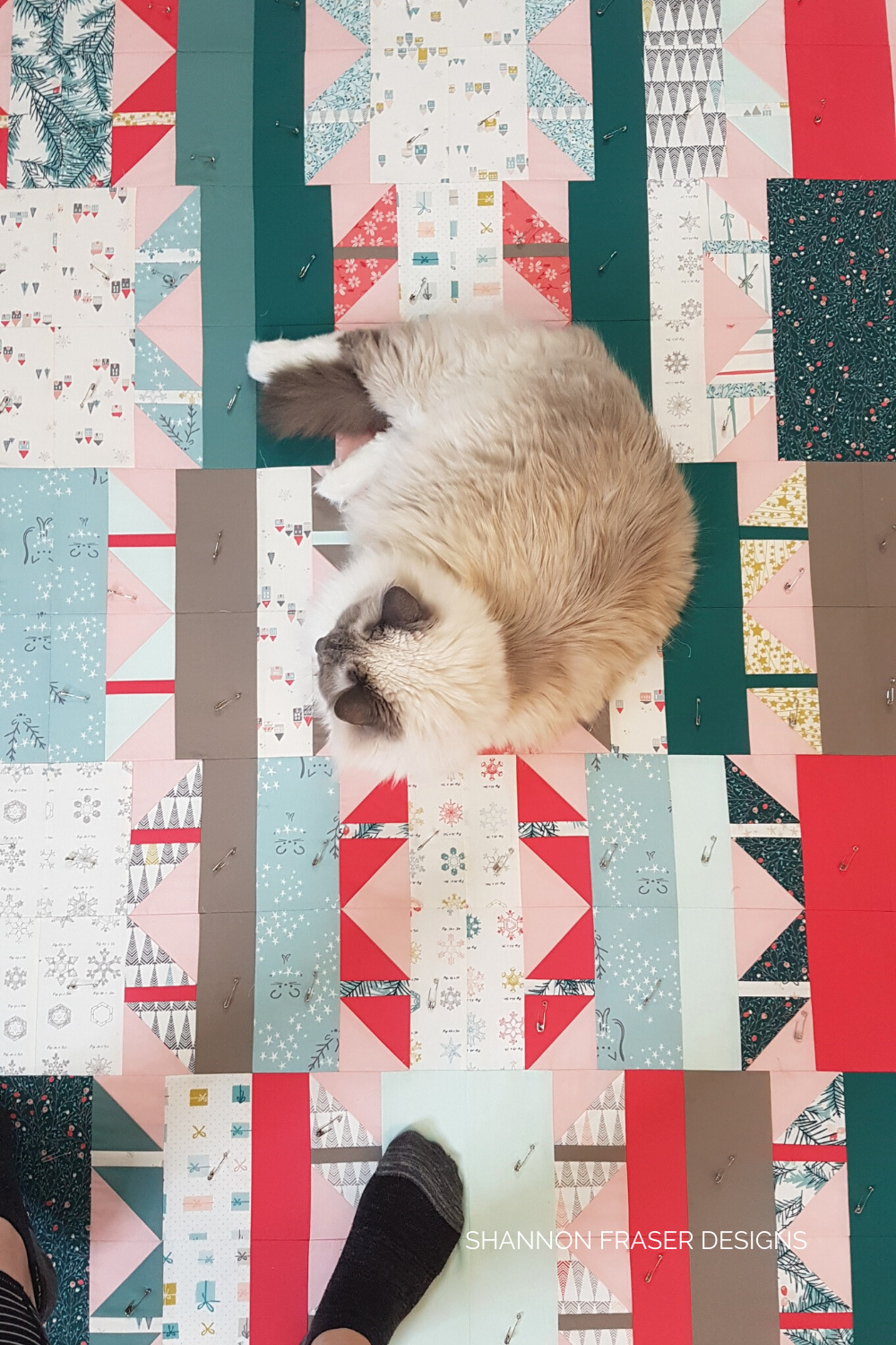Pips hanging out on my freshly pin basted Shattered Star quilt - the holiday version | Shattered Star Quilt Along Week 7: How to baste your quilt | Shannon Fraser Designs #starquilt