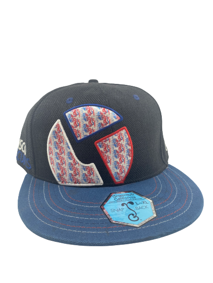 420 LIMITED EDITION GRASSROOTS x THE DISCO BISCUITS SNAPBACK