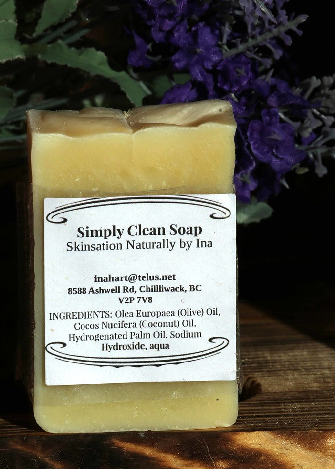 Simply Clean Soap - Skinsation Naturally