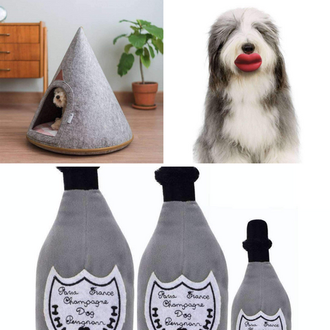 Luxury Products for your Dog