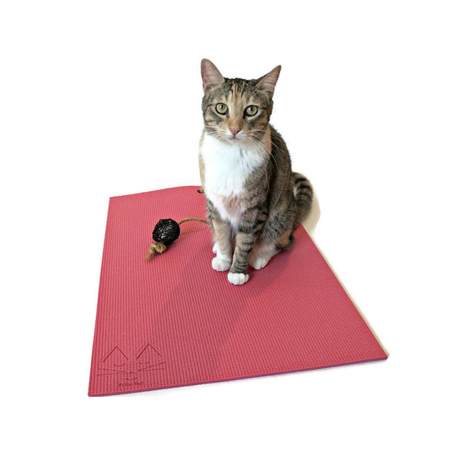 FELINE YOGI YOGA MAT FOR YOUR CAT