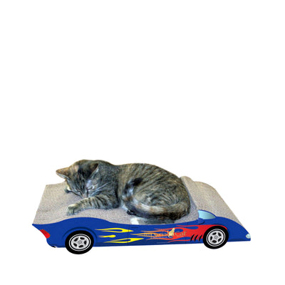 CAT SPORTY CONVERTABLE SCRATCH 'N SHAPE