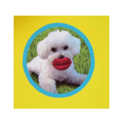 HUMUNGA LIPS SQUEAK FLOAT FETCH DOG TOY