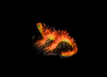 Load image into Gallery viewer, Fire Salamander C