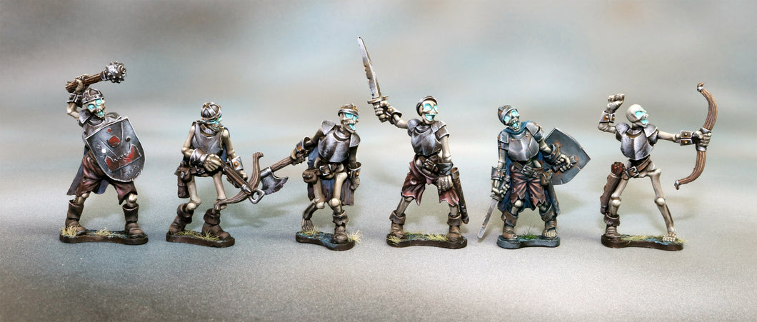 Complete Set of 6 Skeletons