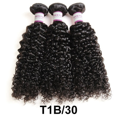 Ombre Brazilian  Kinky Curly Hair Bundles