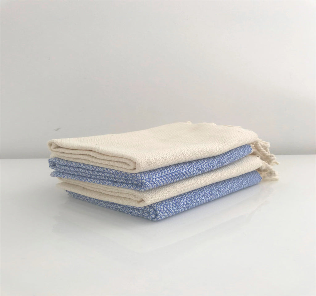 Nysa Napkin - Mix Set of 4 - Blue & Cream