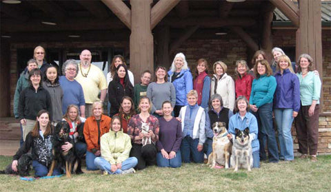 Equine Acupressure Workshops