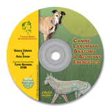 Canine Acupoints & Anatomy DVD