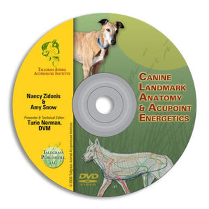 Digital-Canine Acupoint & Anatomy DVD