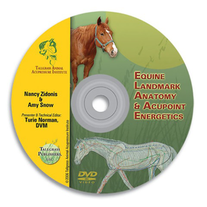 Digital-Equine Acupoints & Anatomy DVD