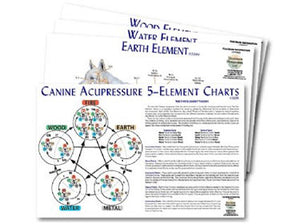 canine animal acupressure meridian charts - use these meridian charts for learning canine acupressure