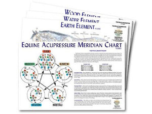 Equine 5-Element Chart Sets