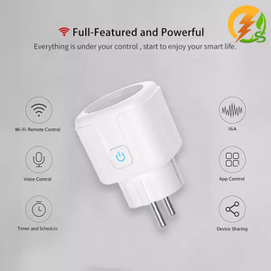 Smart 16 Amp socket