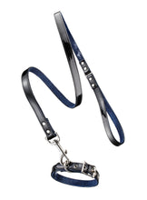 Linda Rodin Linda and Winks Love Audrey 2 leash and collar set for dogs
