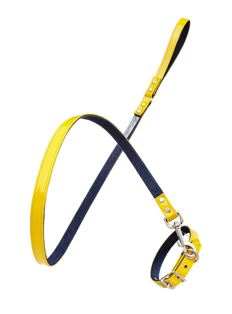 Linda Rodin Linda and Winks Love Blue Bumblebee leash and collar set for dogs