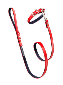 Linda Rodin Johnny Guitar leash and collar set for dogs