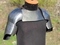 "Europe shoulders ""English Knight"""