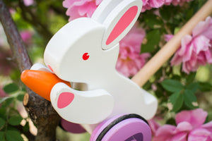 Hape Bunny Wooden Push and Pull Toddler Walking Toy - Wood Wood Toys Canada's Favourite Montessori Toy Store