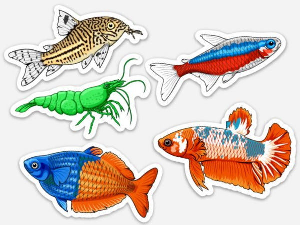 Freshwater Aquarium Fish Stickers, Magnets And Static Clings!