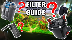 The Best Aquarium Filter For Your New Fish Tank