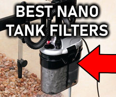 TOP 5 BEST Nano Tank Filters For Your Aquarium