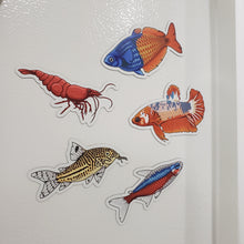 Load image into Gallery viewer, 5 Pack Tropical Fish and Shrimp Stickers/Magnets/Clings - AQUAPROS