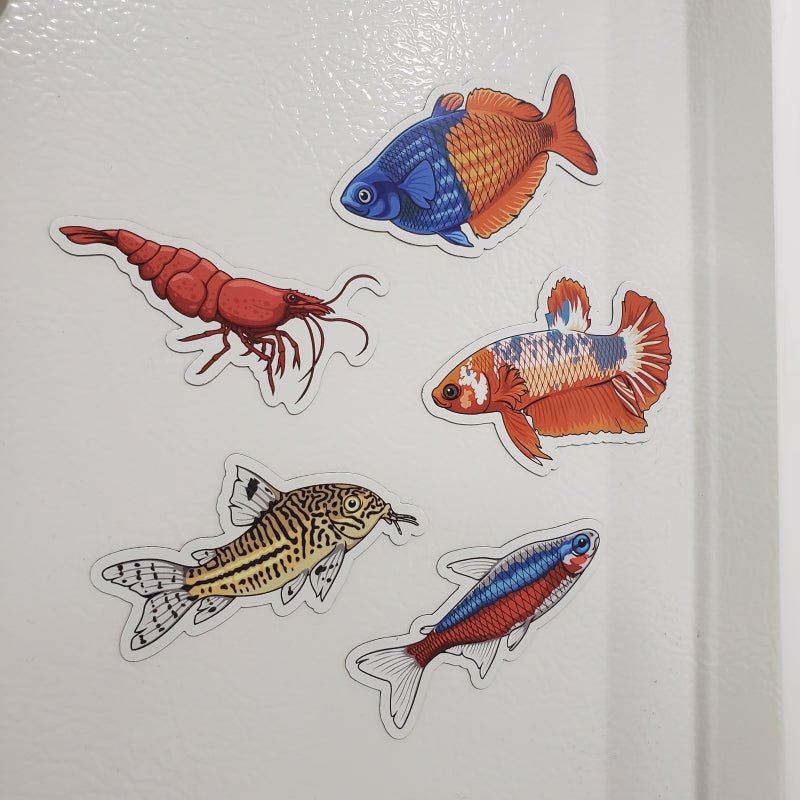 5 Pack Tropical Fish and Shrimp Stickers/Magnets/Clings - AQUAPROS