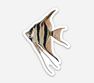 Angel Fish Sticker/Magnet/Cling - AQUAPROS