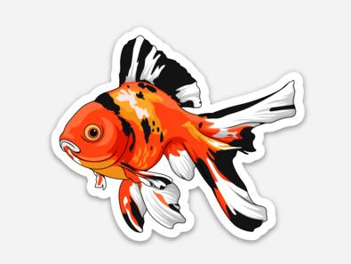 Tri-Color Gold Fish Sticker/Magnet/Cling - AQUAPROS