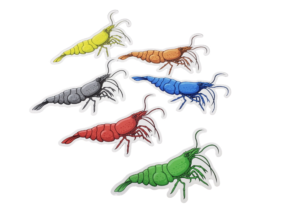 Neocaridina Shrimp 6 Pack Stickers - AQUAPROS