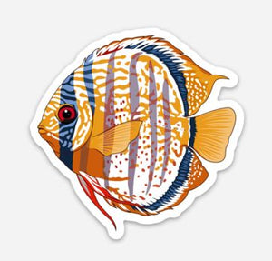 Wild Discus Sticker/Magnet/Cling - AQUAPROS