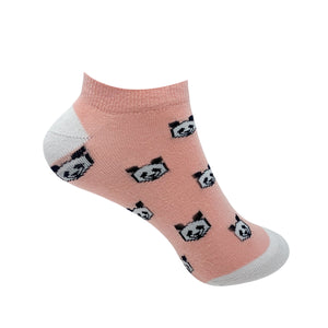 Pandastic Socks For Women