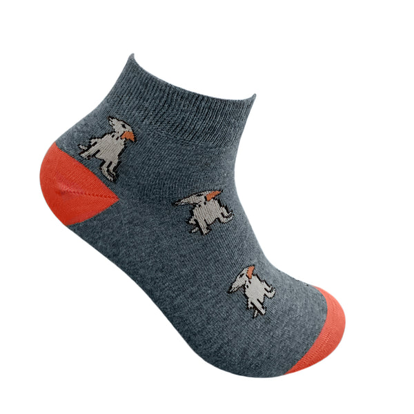 Ankle combo 3 - ANIMALS