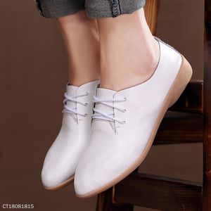 Women Point Toe Lace Up Casual Low Heel Casuals
