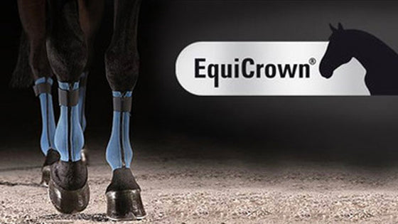 equicrown horse bandages by juzo