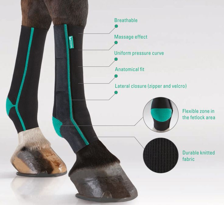 equicrown horse bandages - how it works