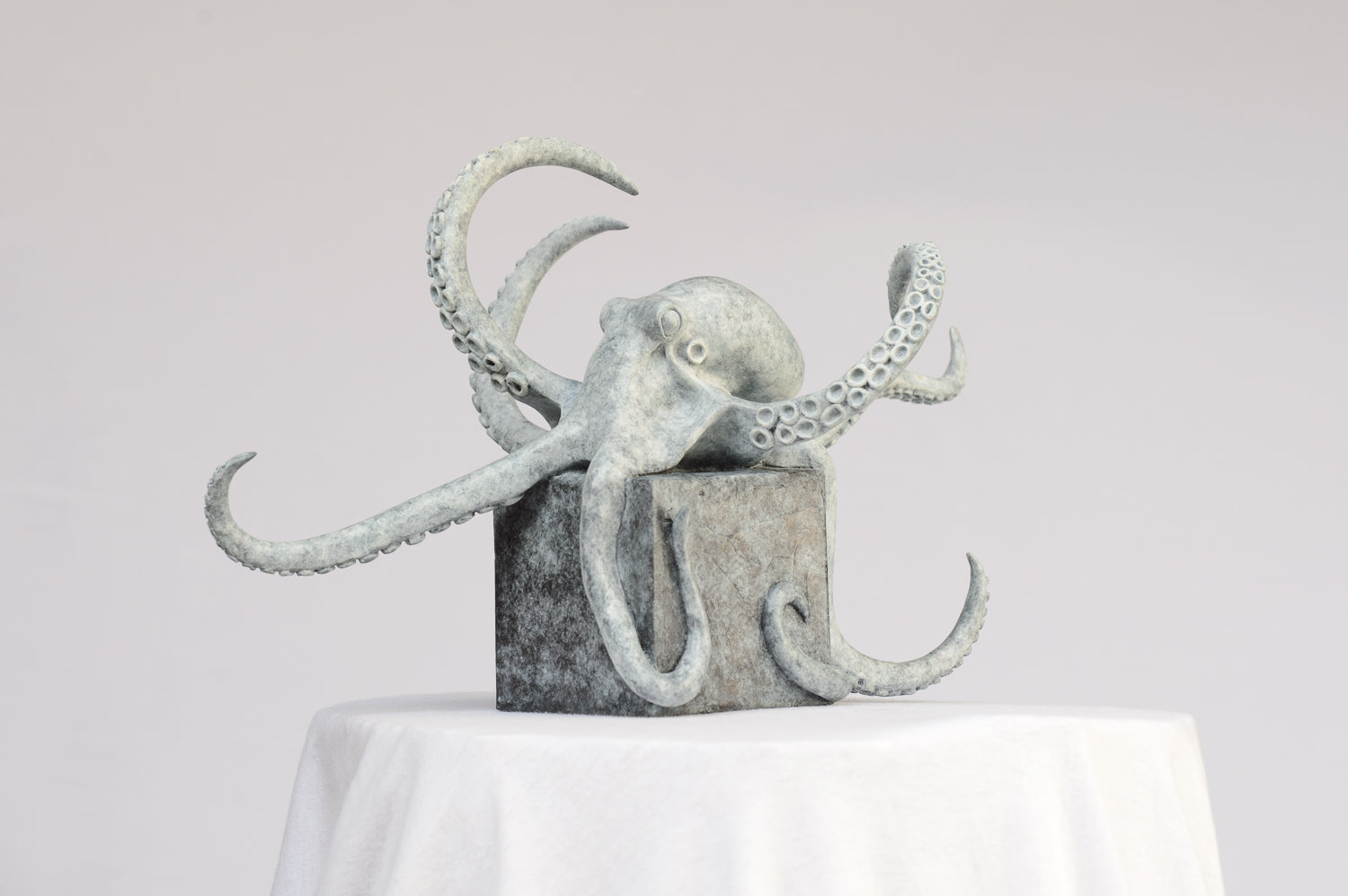 Octopus on a Cube