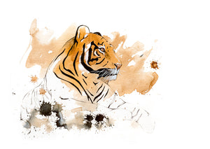 Tiger 16 (original coffee & ink)