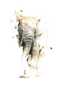 Elephant (original coffee & ink)
