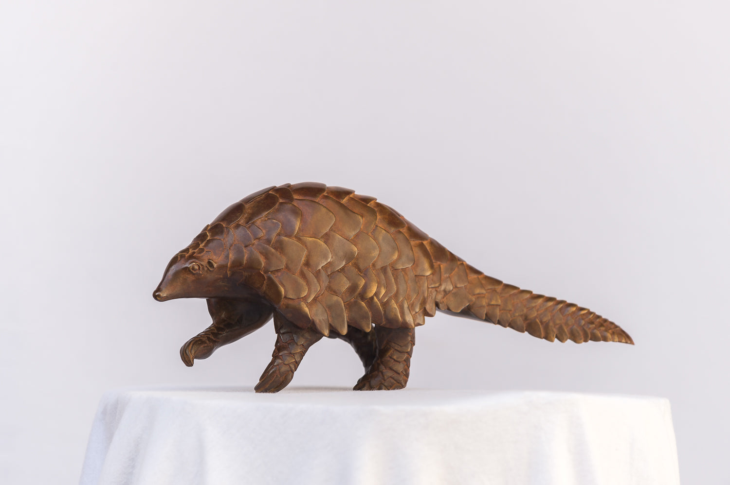 Walking Pangolin