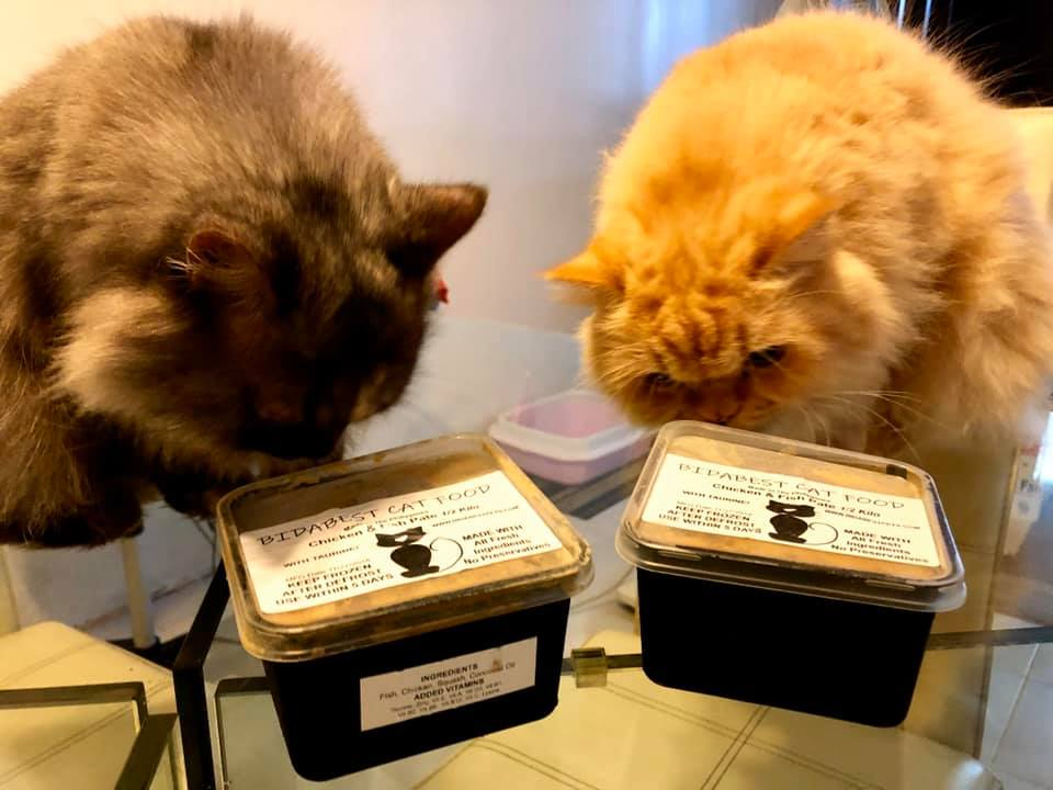 Two cats smelling BidaBest Pet Food.